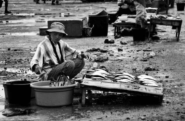 fish market maumere